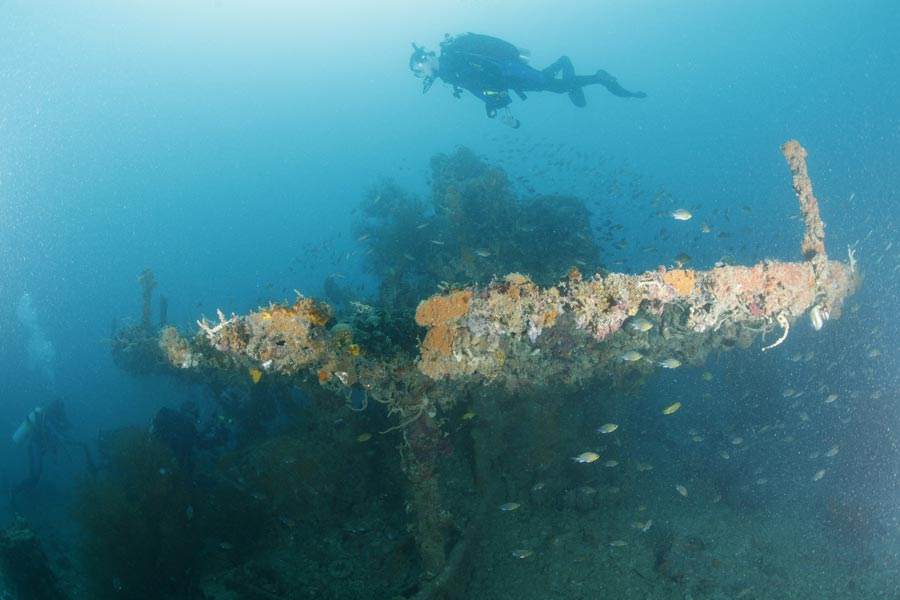Dive Coron Bay Philippines Diving Holiday Asia Trip Idea