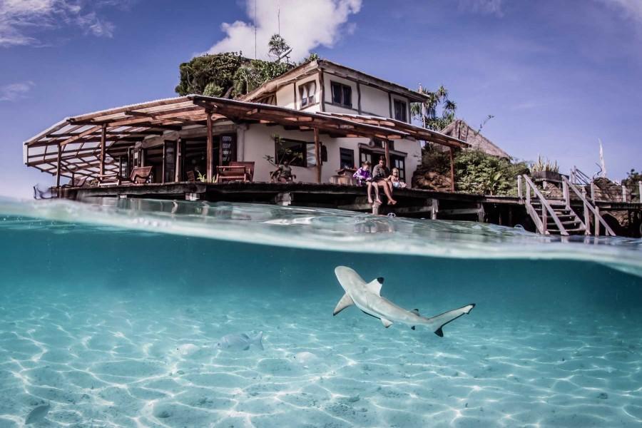Misool eco resort holiday accommodation in indonesia asia dive worldwide - Raja ampat dive resort ...