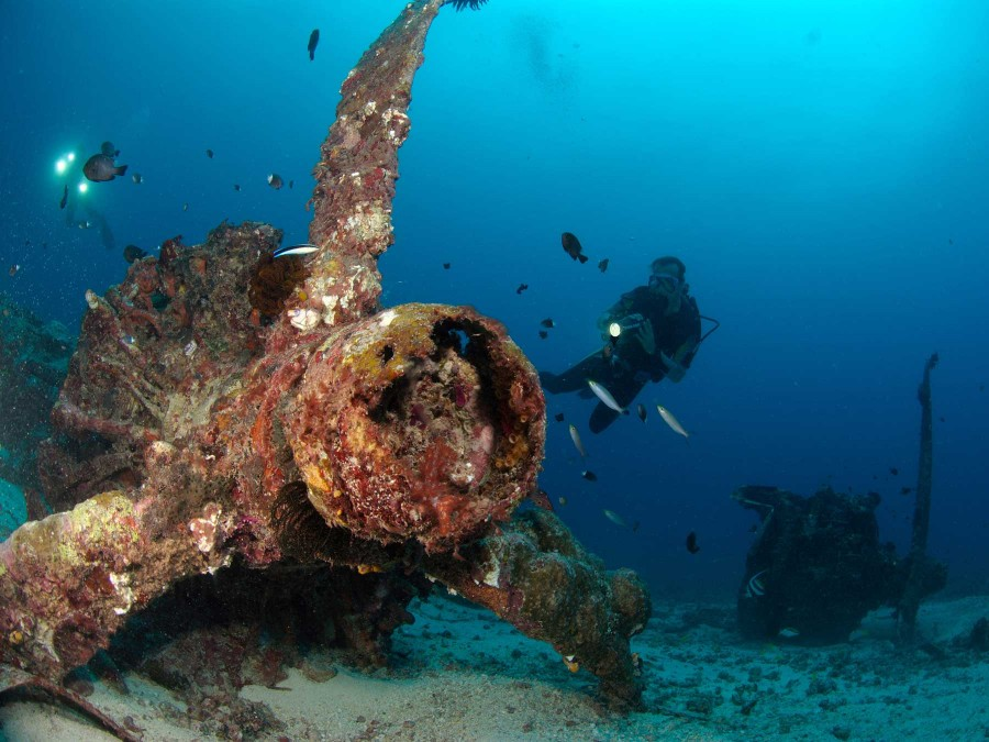 Dive & Discover PNG Papua New Guinea Diving Holiday