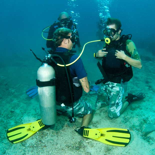 Learn To Dive Holidays Dive Worldwide