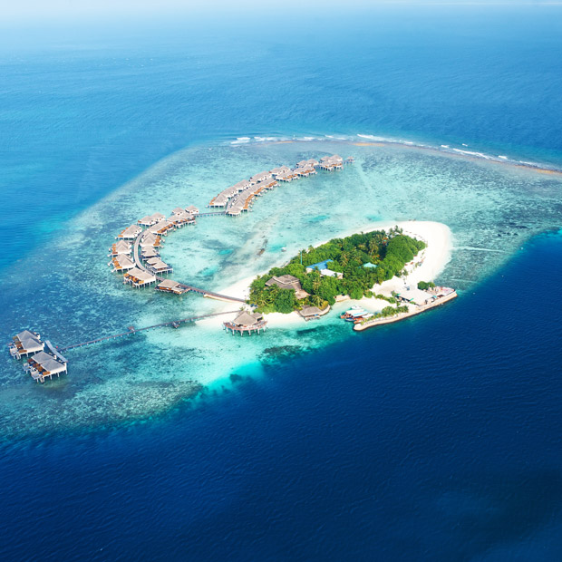 Luxury Diving Holidays Dive Worldwide